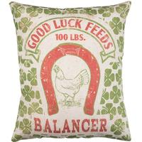 Good Luck Feeds Pillow