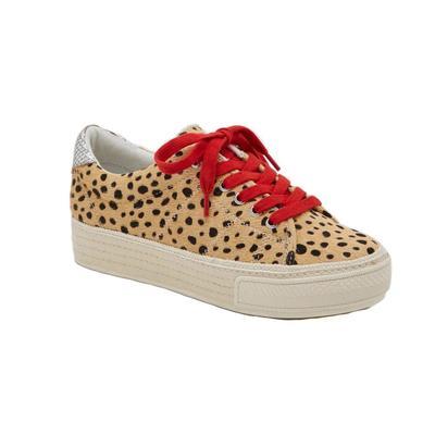 Dolce Vita Women's Tala Sneaker