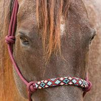 Professional's Choice Beaded Nose Rope Halter