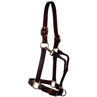 Berlin Custom Leather Horse Size Track Halter