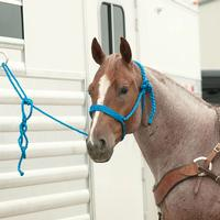 Classic Equine Braided Rope Halter with Lead, Blue