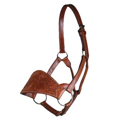 Cactus Saddlery Floral Tooled Buckaroo Leather Halter