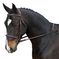 Collegiate Comfort Crown Raised Fancy Bridle