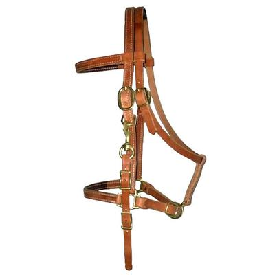 Berlin Custom Leather Halter/Bridle Combination