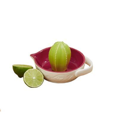 Cactus Citrus Reamer Juicer