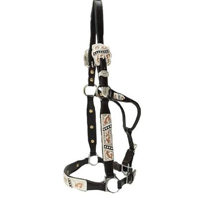 Dale Chavez Congress Cut Multi-Colored Silver Trim Show Halter