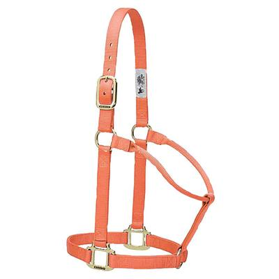 Weaver Original Nylon Web Halter, Average Horse Size