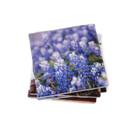 Blue Bonnets Coaster