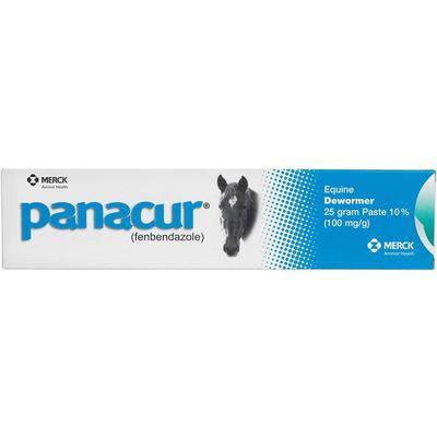 Panacur Equine Paste Horse Dewormer