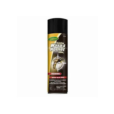 Aerosol Wasp & Hornet Killer, 17.5-oz.