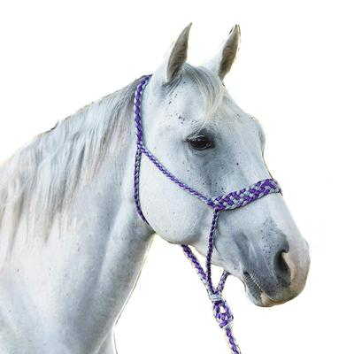 Classic Equine Braided Rope Halter with Lead