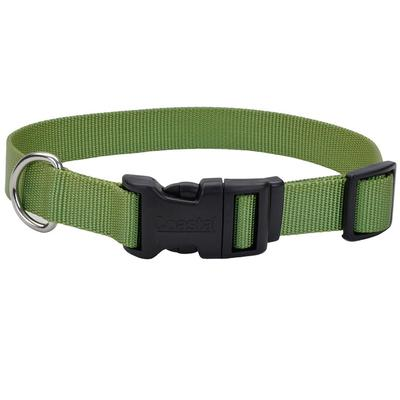 Adjustable Dog Collar with Plastic Buckle 8-12
