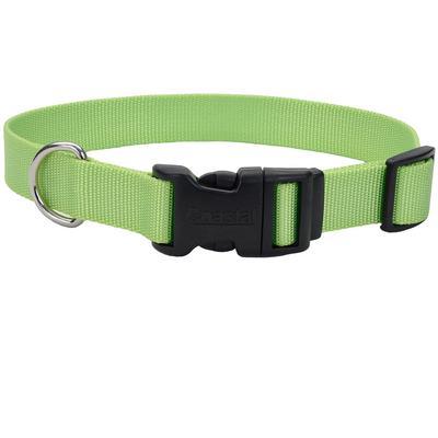 Adjustable Dog Collar with Plastic Buckle 8-12