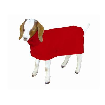 Small Assorted Color Goat Blanket