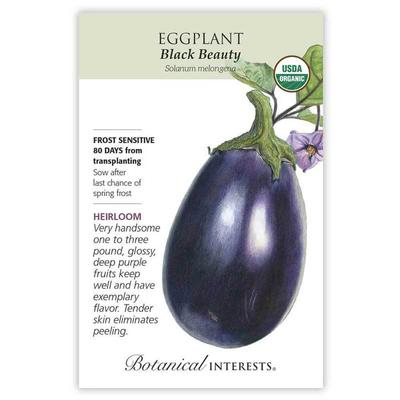 Botanical Interest Organic Black Beauty Eggplant Seeds