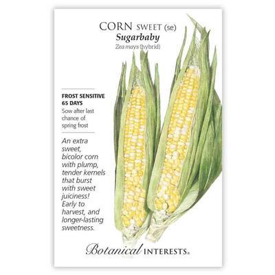 Botanical Interest Sugarbaby Sweet Corn Seeds