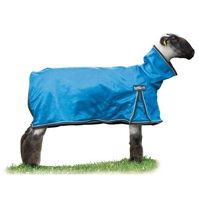 ProCool Sheep Blanket With Reflective Piping- Large B6