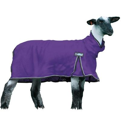 ProCool Sheep Blanket With Reflective Piping- Large