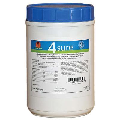 4-Sure 3lb Jar