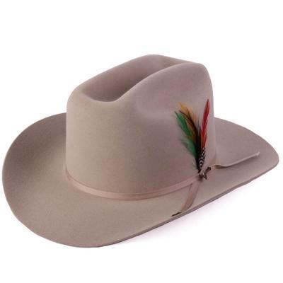 Stetson Men's Range 6X Silver Felt Hat