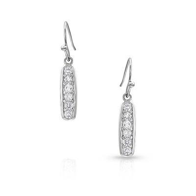 Montana Silversmiths A Bit of Shimmer Earrings