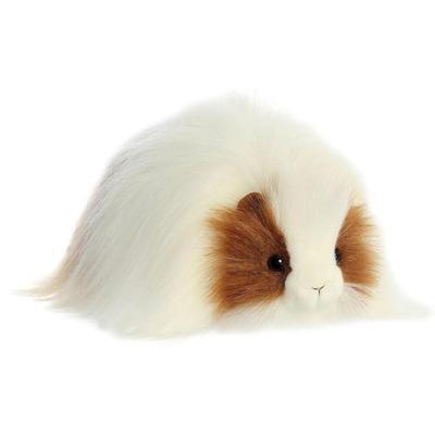 Luxe Boutique Quincy Guinea Pig