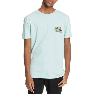 Quicksilver Men's Informal Disco Organic T-Shirt