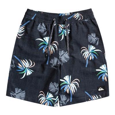 Quiksilver Boy's Royal Plams Swim Shorts