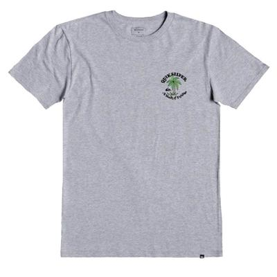 Quiksilver Boy's Many Nows T-Shirt