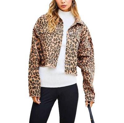 Women's Cropped Leopard Print Denim Jacket