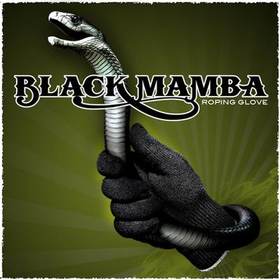 Black Mamba Single Roping Glove