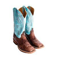 Anderson Bean Chocolate Volcano Cowboy Boots
