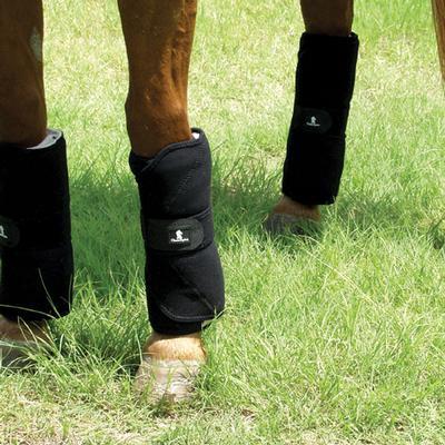Classic Equine Stress Guard 12
