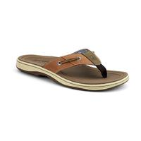 Sperry Men's Baitfish Boxed Sandals