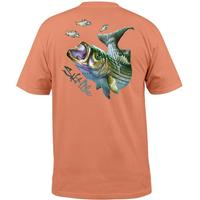 Salt Life Men's Stripin' the Rips T-Shirt