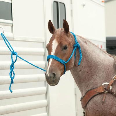 Classic Equine Rope Halter